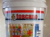 金装五合一墙面漆 F-04 意大利涂之乐 涂之乐招商