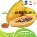 南京泽朗厂家直销优质木瓜浓缩粉 植物提取物