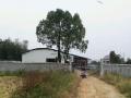 益沅公路箭厂坪正路口 厂房 4000平米