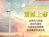 山西供应 500瓦/w家用风力发电机 晟成诚邀您加盟
