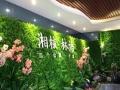 植物墙,绿植墙,仿真花草