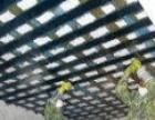 朝阳房屋建筑加固有限公司