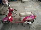 转让电动车 48 轻便电瓶车惠州合标的电动自行车850元