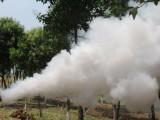 高射程农用喷药机 脉冲式弥雾机 不锈钢小型烟雾机超高品质