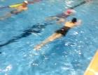 广州成人专业游泳培训,室内恒温池上课,包教包会常年招收学员