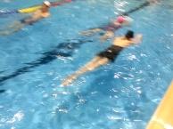 学游泳,找专业游泳教练,室内恒温池上课,包教包会常年招收学员