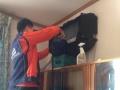 钟点工.墙体除霉.新房开荒.大扫除.家电清洗