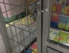 大型犬狗笼子加狗笼罩
