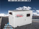欧洲狮30kw静音汽油发电机