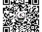 武术 散打 格斗 防身术 太极培训俱乐部