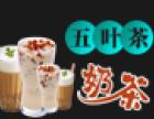 五叶茶奶茶加盟