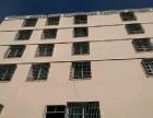 亚龙湾 旅馆,公寓转让,64 间房