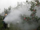 电启动小型大棚蔬菜杀虫喷雾机 多规格手提式打药机型号