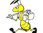 广州蚂蚁搬家公司 全广州搬家 及时可靠