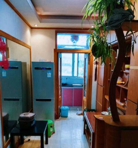 急急租 忠诚街 新玛特附近 精装修 温馨两房 来吧