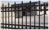 喷塑铁艺护栏供应厂家 供应专业的喷塑铁艺护栏