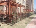 烟台市中心 正经大花园