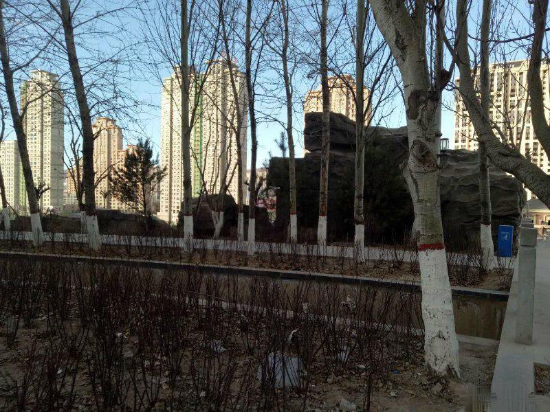 海湖新区潜力地段金座昕艺园三室朝阳南北通透可贷款交首付签