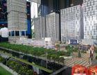 横琴后花园保税区一楼临街餐饮商铺仅160万/套