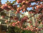 出售明珠花园小区 2室2厅1卫明珠花园小区