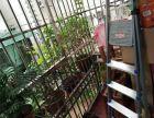 三峡大学 学府花园 精装 稀缺2居 税低 千年等一回别错学府花园