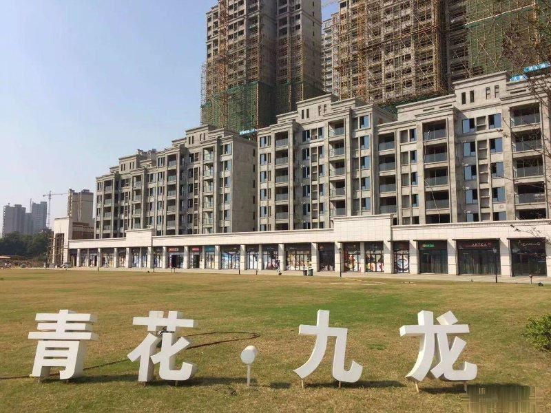 省政府重点打造区域 九龙湖的主干道的单层铺不可错过