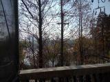 中山公园湖边