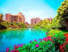 清水湾珊瑚宫殿大三房南北通透 拎包入住 生活配套齐全环境