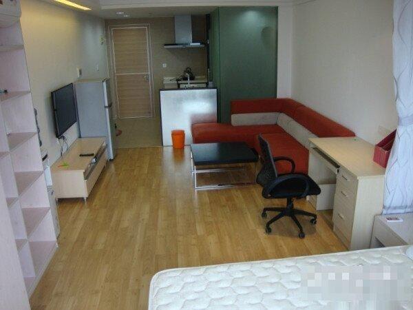 中南酒店附近 1房1厅 仅1400元 商住两用 精美装修