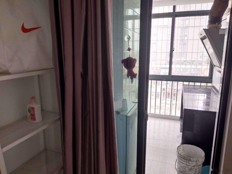 集美 新华都 嘉庚体育馆 泉水湾一期 标准单身公寓 拎包泉水湾一期