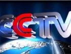 CCTV中央电视台广告方案策划 央视广告投放与后期监测服务