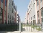 900 3000 独栋标准钢结构厂房 仓储出租出售