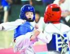 大兴专业少儿跆拳道培训 武术从小学起 武德相伴成长