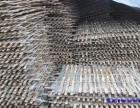 江阴大量出售采购回收铁竹片钢竹片毛竹片 竹片竹梯建筑模板