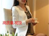 厂家直销新款 韩版长袖修身小西装潮