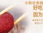 新疆小韩优果水果罐头