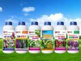 青枣专用肥供应商 优质水果专用肥批发价格