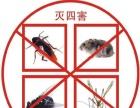 迅雷虫控,专业灭老鼠灭蟑螂