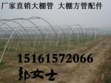 江苏盐城阜宁县大棚厂现货长度3.5-12米蔬菜大棚骨架管便宜