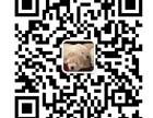 合肥专业代账商标注册资质办理