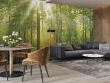 JCC天洋 光影绿林 玄关-书房-客厅背景无甲醛定制壁画