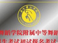 闵行儿童舞蹈培训 民族芭蕾舞课 少儿中国舞 拉丁舞