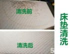 pvc地面清洗打蜡 茶几地毯清洗 公司地毯沙发椅子清洗