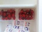 银川枸杞泡沫箱、纸箱、冰袋、冰排、吸塑盒、冰块