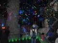 威海自驾门票华夏赤山刘公岛西霞口动物园成山头海驴岛