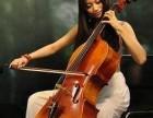 杨浦区小黑喵钢琴电子琴小提琴大提琴家教教学
