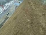 生态修复绿化高分子土壤改良剂厂家直销