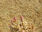 出售食用菌专用木屑 锯末