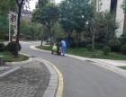 郑州灭蟑螂公司高效彻底安全