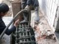 固安专业地基加固公司地基基础下沉打桩注浆施工